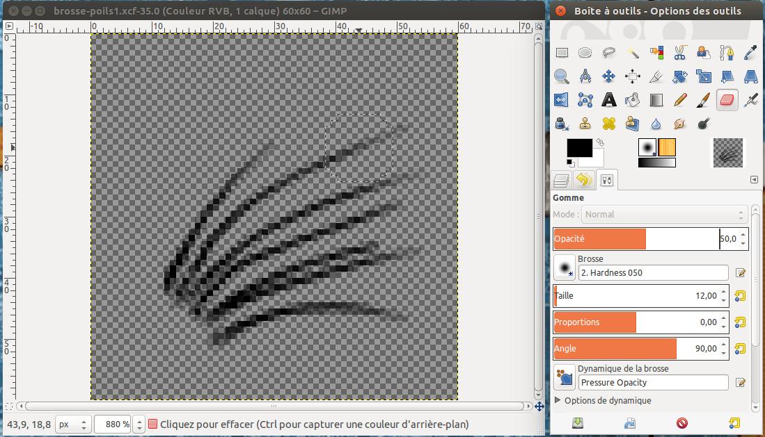 Créer une petite image de poils. Estomper les extrémités (gomme)