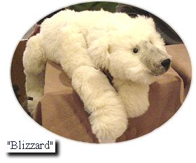 Blizzard bear, a floppy bear
